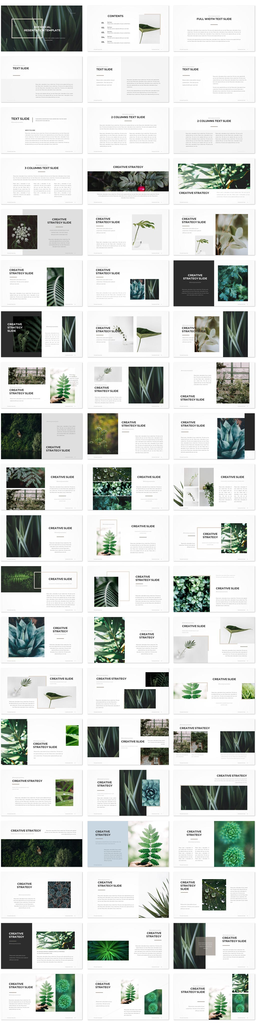 Botanical PowerPoint Template