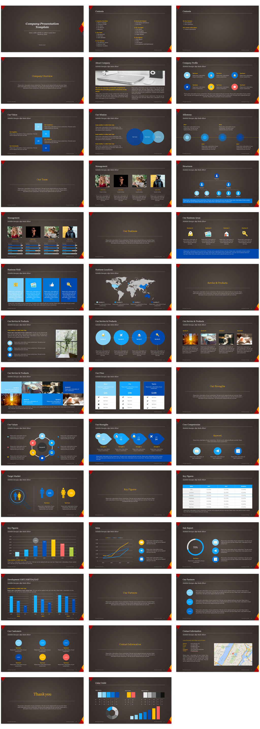 Company Introduction PowerPoint Templates