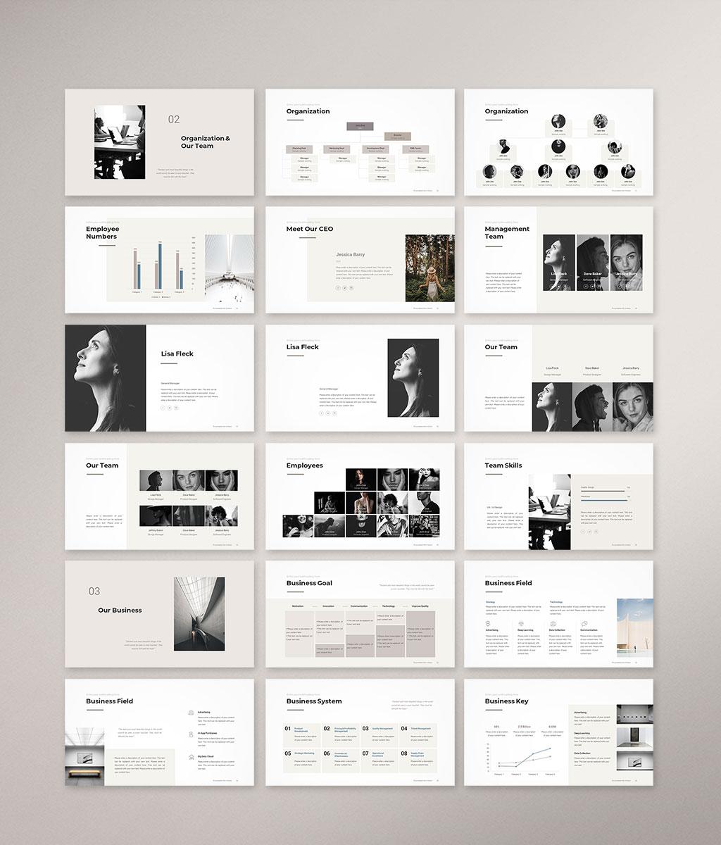 Company Profile Presentation Template Preview 002