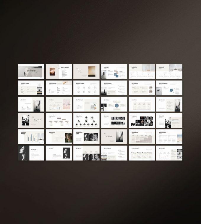 Company Profile Presentation Template Preview_1